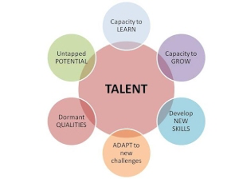 A chart illustrating how you can identify talent potential. bubble chart
